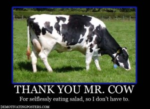 demotivating-posters-demotivational-posters-funny-posters-posters-cow-meat-salad